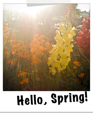 Spring-044